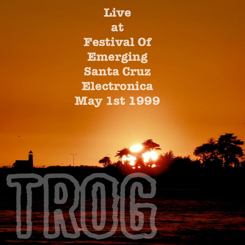 Live At Festival Of Emerging Santa Cruz Electronica 1999